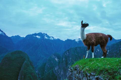 マチュピチュ ペルー 絶景
