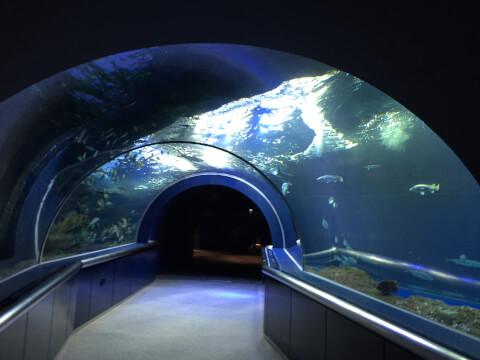 マリンピア日本海5