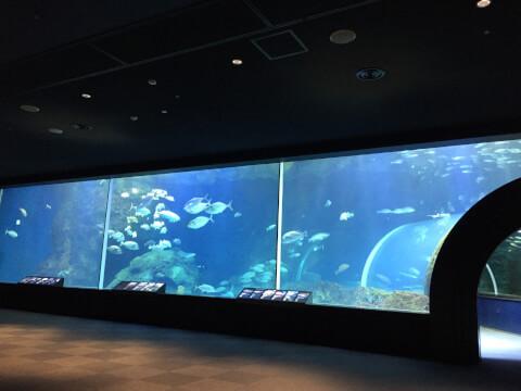 マリンピア日本海8