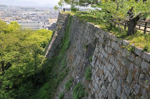 marugame-ishigaki