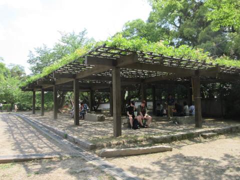 ベンチ 円山公園