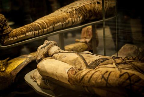 大英博物館 ミイラ