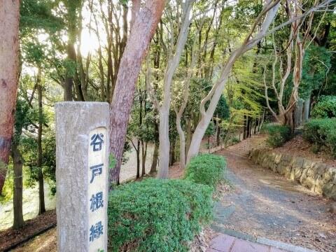 谷戸根緑地 愛宕団地 聖蹟桜ヶ丘 耳をすませば ジブリ