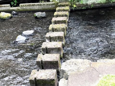まっすぐの飛び石がある川