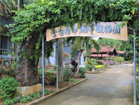 宮古島市立熱帯植物園