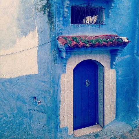 morocco-cat