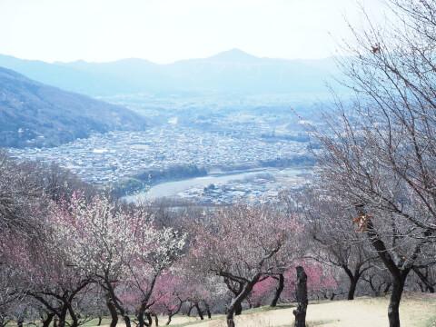 長瀞の景色