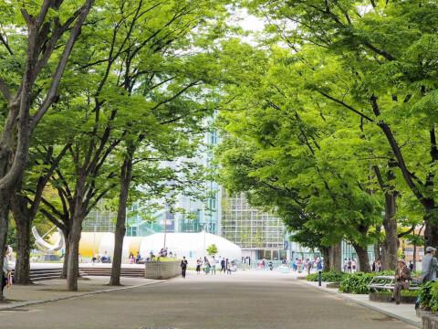 名古屋市美術館 白川公園