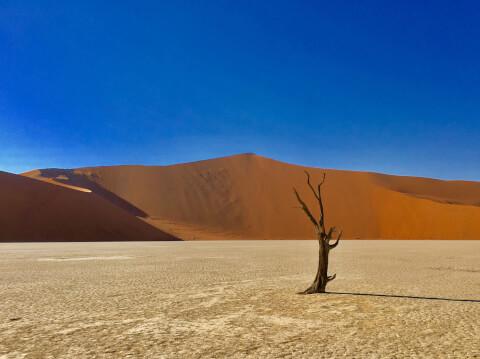 ナミブ砂漠 ナミビア デッドフレイ