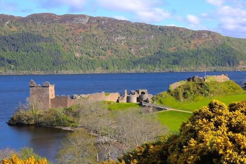 スコットランド ネス湖 観光