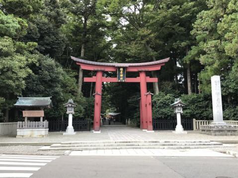 弥彦神社鳥居
