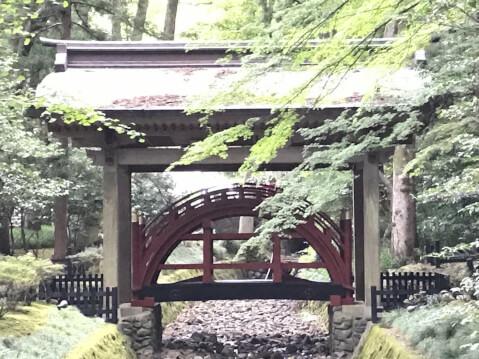 弥彦神社 橋