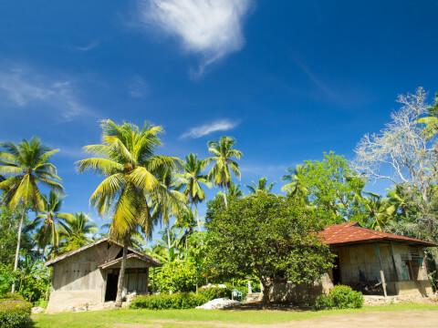 フローレス島 インドネシア ヌサ・トゥンガラ