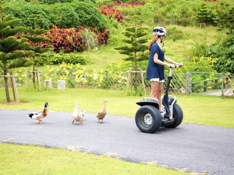 segway_the_shigira
