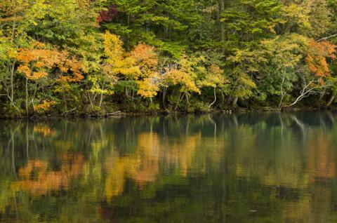 オンネト―湖畔に移る紅葉