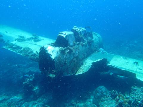 パラオ 海 飛行機 歴史