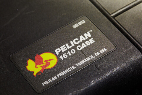 pelican_02
