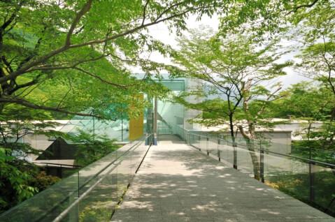 ポーラ美術館 箱根