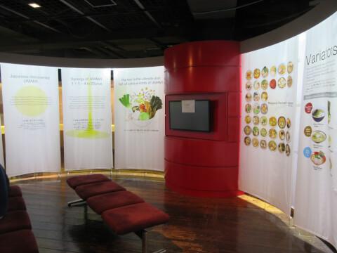 ラーメン展示 ラーメン博物館