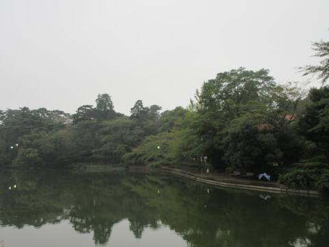 大宮公園 池