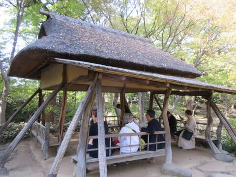 六義園 つつじ茶屋