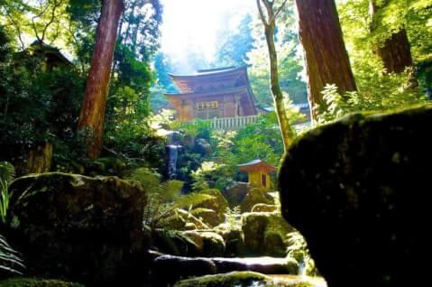 大雄山最乗寺 関東 おすすめ パワースポット