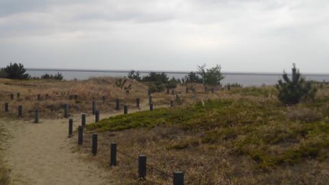 砂丘観察園路
