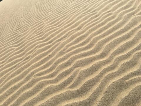 日本 絶景 鳥取 鳥取砂丘 風紋