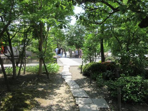遊歩道 庭園