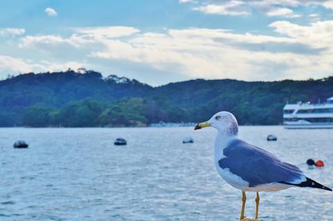 仙台:日本三景の一つである松島2