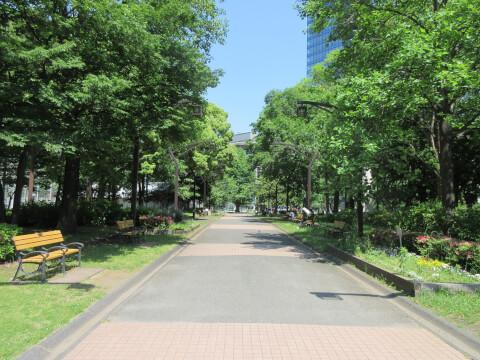 芝公園 遊歩道