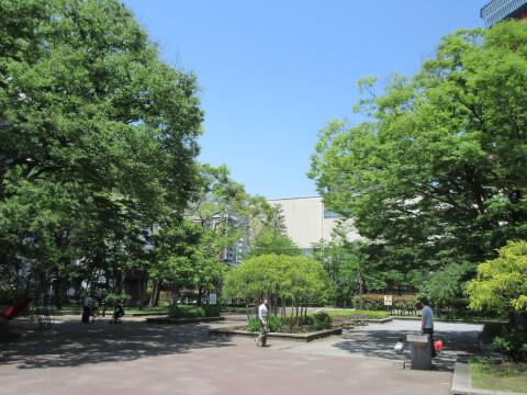 芝公園 広場