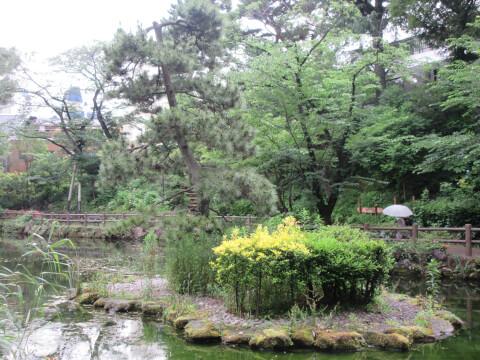 翔津鍋島公園 池