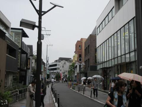 キャットストリート 一本道