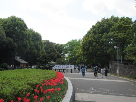 代々木公園 入口