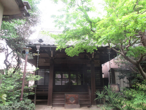 真竜寺 本堂