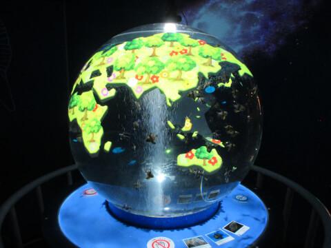 地球 しながわ水族館