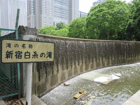 新宿中央公園 滝