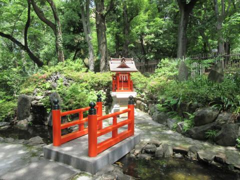 熊野神社 池
