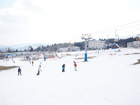 snowboards_21