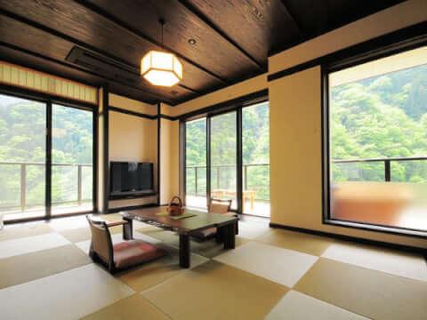 祖谷美人 徳島 ホテル
