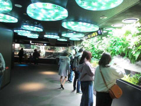 水辺の旅 サンシャイン水族館