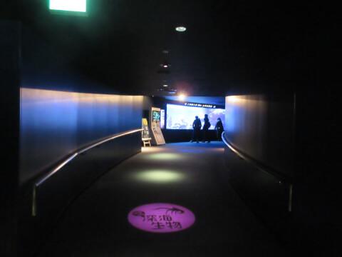 サンシャイン水族館 通路