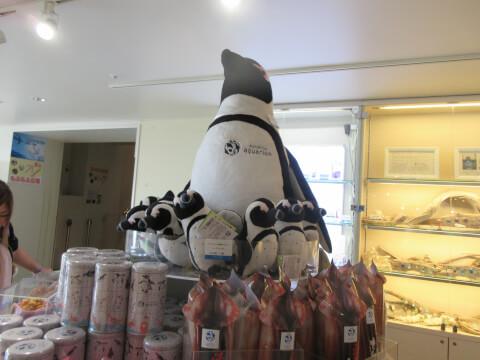 アクアポケット ペンギン