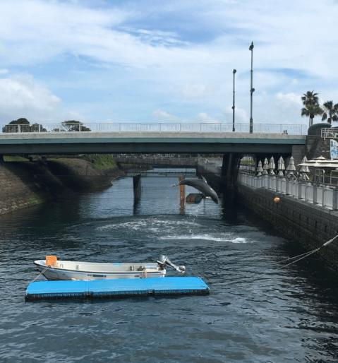 鹿児島水族館 水路