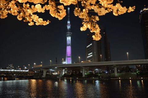 SUmida_park_skytower