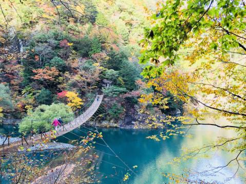 日本 絶景  静岡 寸又峡 夢の吊り橋