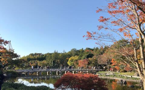 昭和記念公園_日本庭園_紅葉