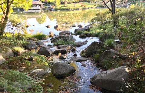 昭和記念公園_日本庭園