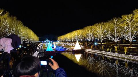 昭和記念公園 冬